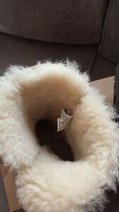 Authentic UGG boots Edmonton Edmonton Area image 3