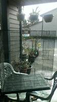 bid cage for sale