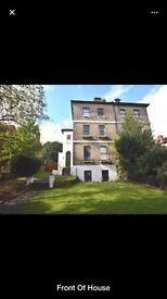 Two double rooms to rent in beautiful period house - Central Rochester