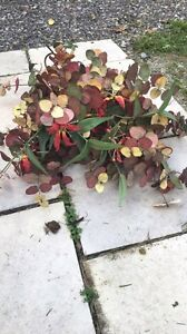 FREE 3' Tall Artificial Flowers