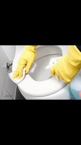 Excellent cleaning for your home or office.  Kingston Kingston Area image 3