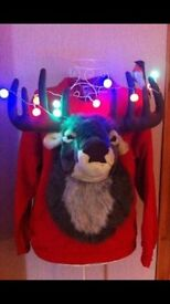 3D Christmas Reindeer Jumper