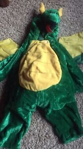 Full dragon costume with attached wings and tail. Size 2-4