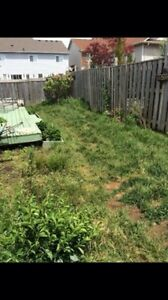 LAWN and ORDER - full yard makeovers, clean ups and cuts