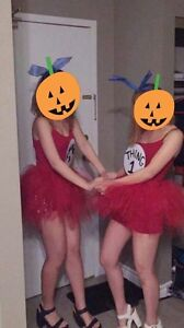 Halloween Costume for two (Thing 1 & Thing 2)