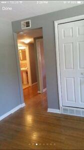Great 2 bedroom, 1 bathroom upper Apt London Ontario image 2