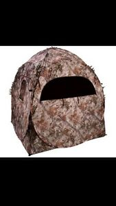 Hunting blind and Tree stand