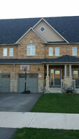 Beautiful Townhouse in Waterdown