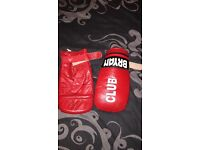 Punch bag & gloves