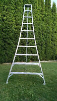 ,Aluminium 10' orchard ladder