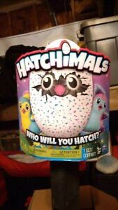 Hatchimals you see this for $50 someone is playing around