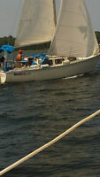 A gem of a sailboat to cruise Georgian Bay on