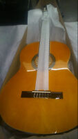Guitare aria Classique FIESTA FST200 neuve