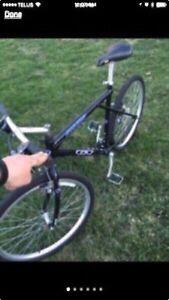GT Arrowhead Mountain Bike