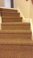 SPECIAL**Your Basement Stairs in Berber for $250**SPECIAL