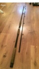 X Citer carp fishing rod
