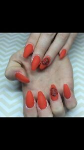 Nail Tech Accepting New Clients  St. John's Newfoundland image 3