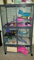 5 foot tall rat/ferret/chincill cage plus accesiores