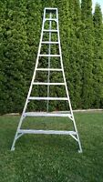 Aluminium 10' orchard ladder
