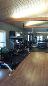Private Personal Training Space Available Kitchener / Waterloo Kitchener Area image 5