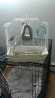bird cage and few assec
