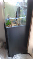45 gallon fishtank with stand