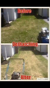 Fall Clean Ups & Lawn Repairs FREE QUOTES! Kawartha Lakes Peterborough Area image 8