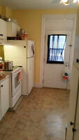 Female roommates wanted in St-Henri!!