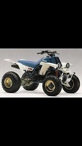 Willing to buy your quad or dirt bike