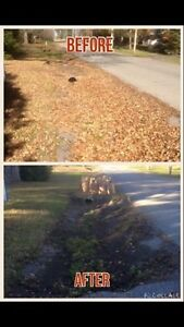 Flat Rate Leaf Blowing And Clean Up  Kawartha Lakes Peterborough Area image 4