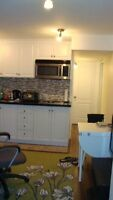 bachelor furnished for rent,single working individual, vaughan