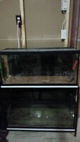 Aquariums / Fish Tanks