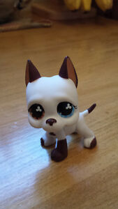 Rare Littlest Pet Shops! London Ontario image 1