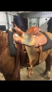 Western saddle for sale-MUST go!!! Strathcona County Edmonton Area image 5