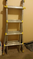 Cosco Multi Use Ladder