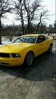 2006 Ford Mustang GT SAFTIED OBO REDUCED