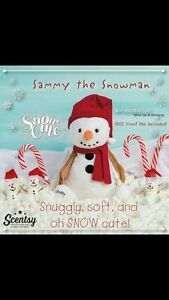 Get your Scentsy in time for Christmas! St. John's Newfoundland image 9