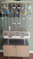 birds cage and stand