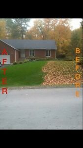Flat Rate Leaf Blowing And Clean Up  Kawartha Lakes Peterborough Area image 2