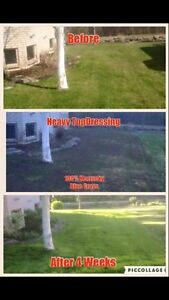 Fall Clean Ups & Lawn Repairs FREE QUOTES! Kawartha Lakes Peterborough Area image 10