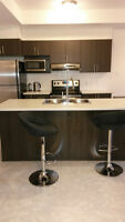 New, Furnished, Modern 1 Bedroom Apartment