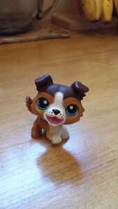 Rare Littlest Pet Shops! London Ontario image 6