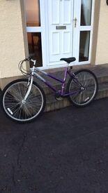 Klondyke Mountain Bike