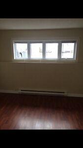 2 bedroom basement apartment in Cowan Heights  St. John's Newfoundland image 2