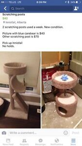 Scratching post used for a couple weeks