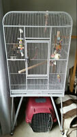 Big bird cage. metal and in GREAT shape