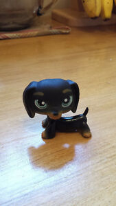 Rare Littlest Pet Shops! London Ontario image 3