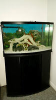 46 Gallon Bowfront Aquarium Set with Stand and Decorations
