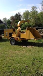 Firewood and Tree Removal Services London Ontario image 3