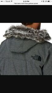 The North Face Men's Winter Coat (Size Large)